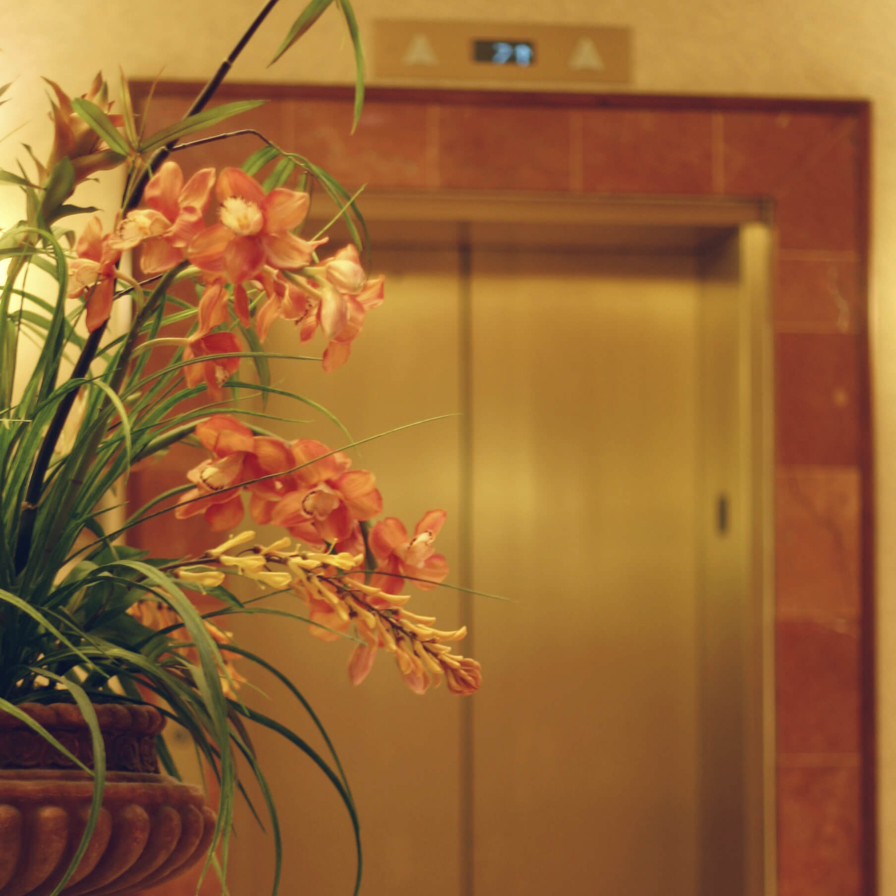 bbl-corporate-flowers-07