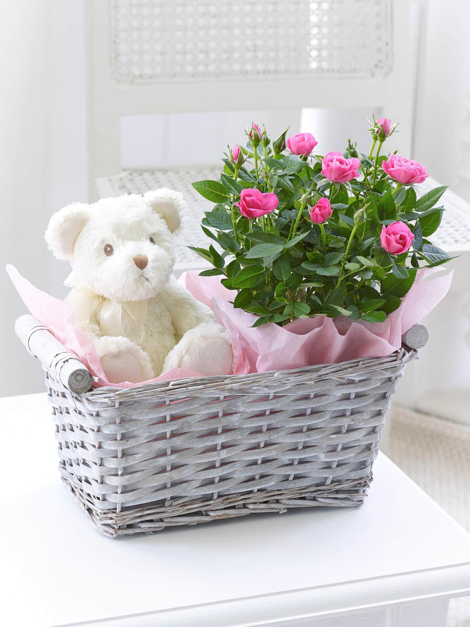 Baby Girl Gift Basket