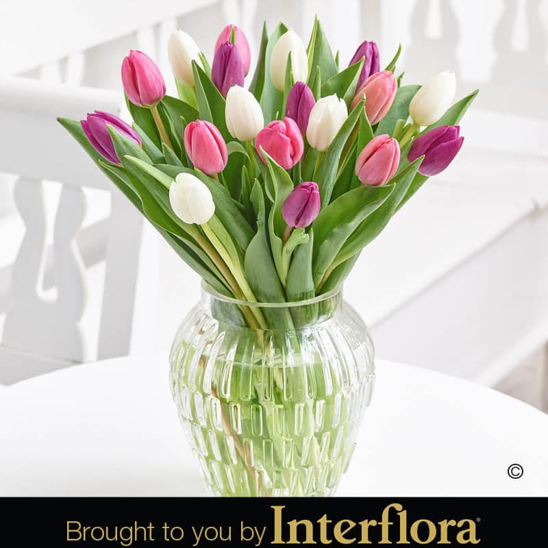Pink Elegance Tulip Vase Bbl Design Ecommerce